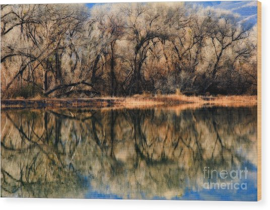 Late December Reflection At Dead Horse Wood Print