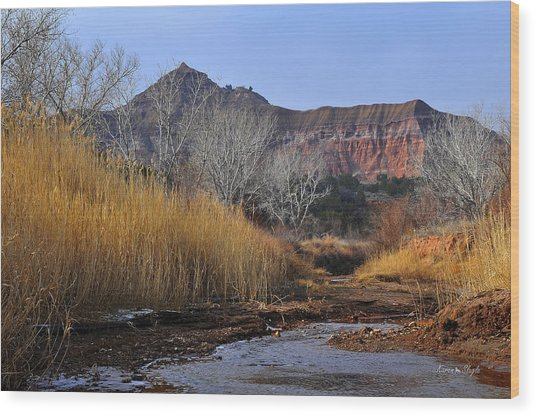Late Fall In Palo Duro Canyon Wood Print