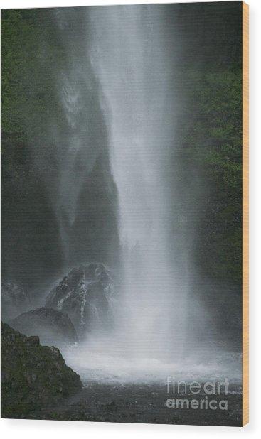 Latourelle Falls 5 Wood Print