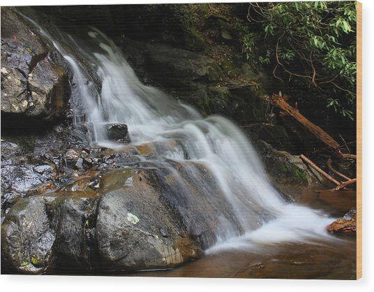 Laurel Falls Great Smoky Mountains Wood Print