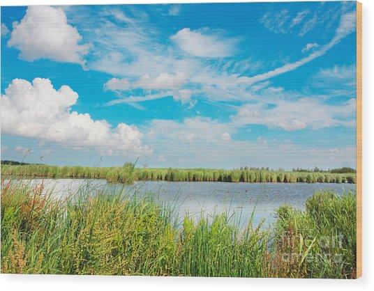 Lauwersmeer National Park. Wood Print
