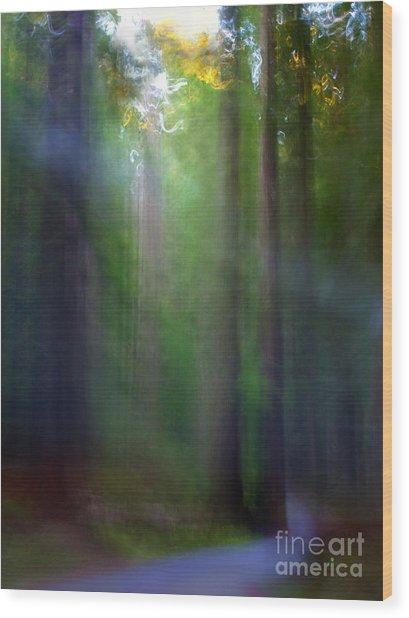 Lavendar Road Wood Print by Tonja Gabryshak Howard