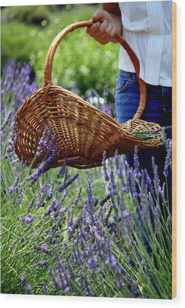 Lavender And Basket Wood Print