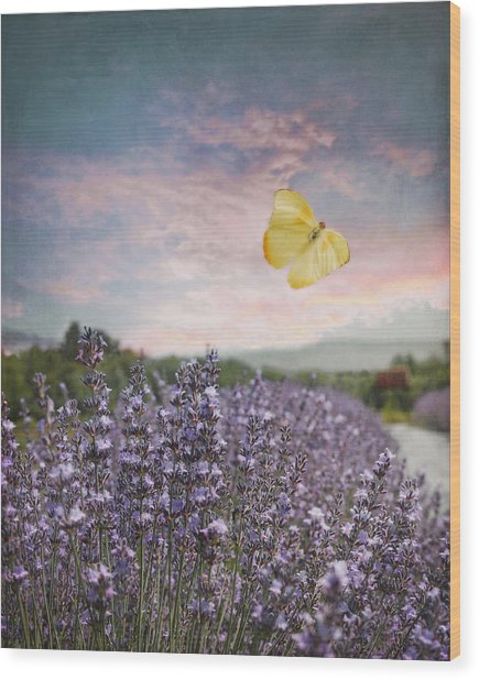 Lavender Field Pink And Blue Sunset And Yellow Butterfly Wood Print