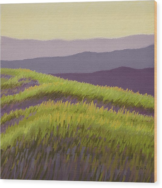 Lavender Hills Forever Wood Print by Bruce Richardson