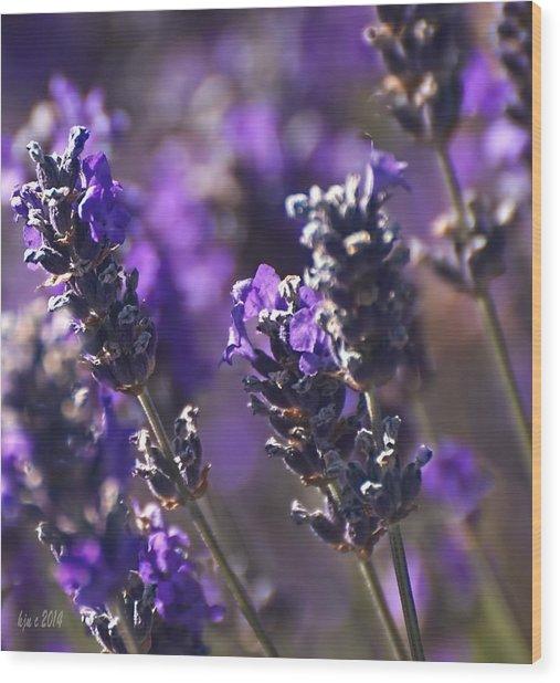 Lavender Stems Wood Print