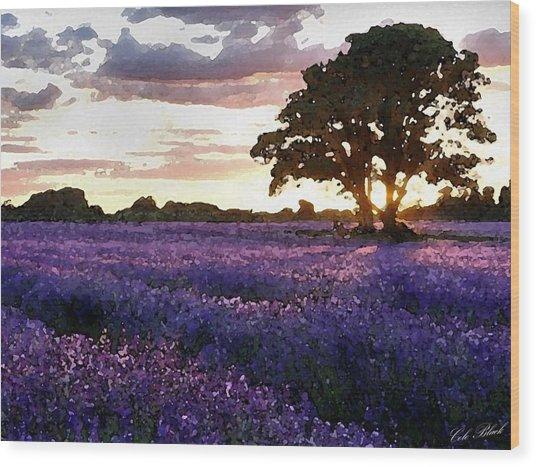 Lavender Sunset Wood Print by Cole Black
