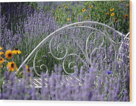 Lavender With Scrolled Settee Wood Print