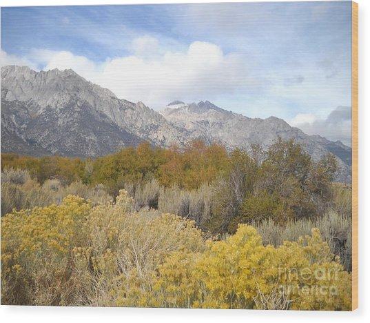 Layered Color Wood Print