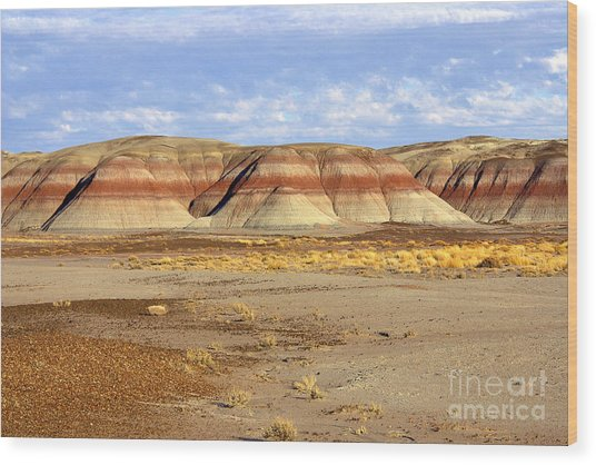 Layers And Landform - The Painted Desert Wood Print by Douglas Taylor