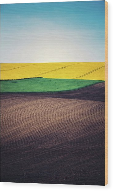 Layers Of Colorful Field Wood Print by Borchee