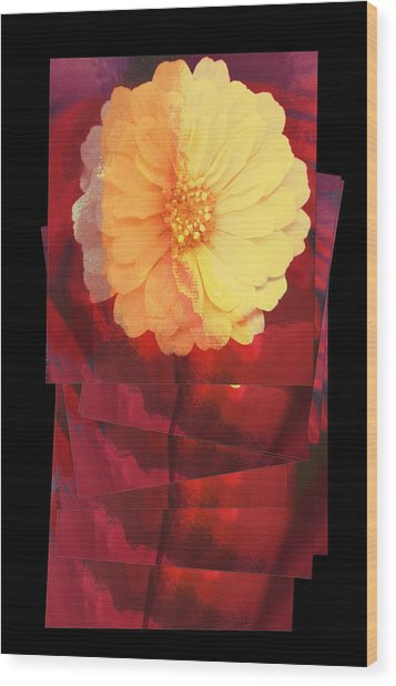 Layers Of Yellow Flower Wood Print by Susan Stone