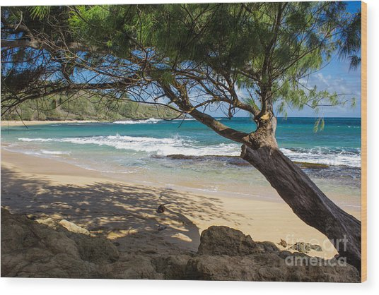Lazy Day At The Beach Wood Print
