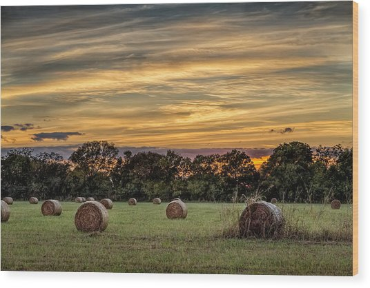 Lazy Hay Bales Wood Print