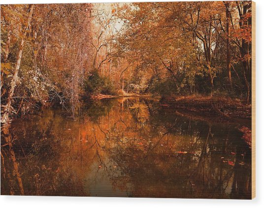 Lazy River Autumn Wood Print