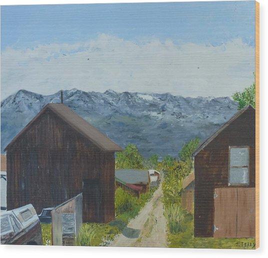 Leadville 2 Wood Print by John Terry