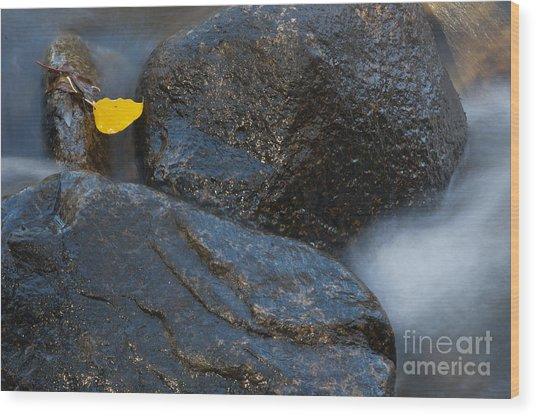 Leaf Bridge One Wood Print by Vinnie Oakes