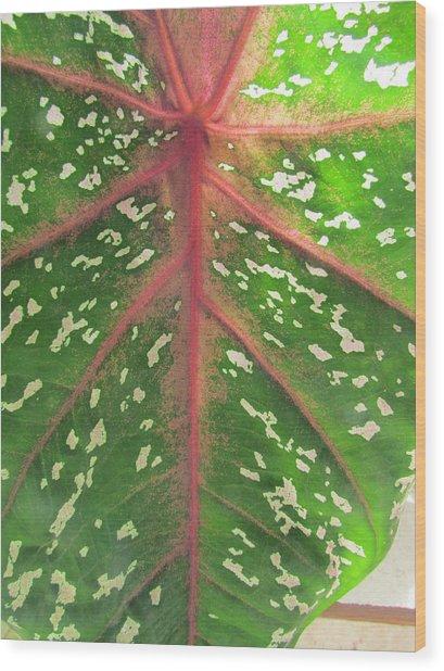 Leaf Design Wood Print