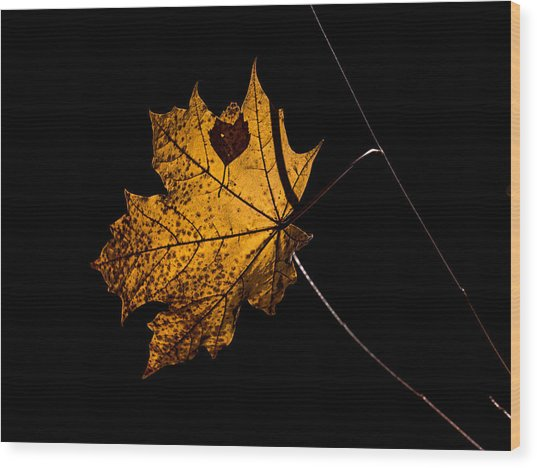 Leaf Leaf Wood Print