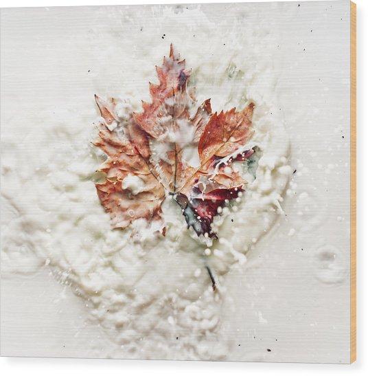 Leaf Leap Wood Print by Ivan Vukelic