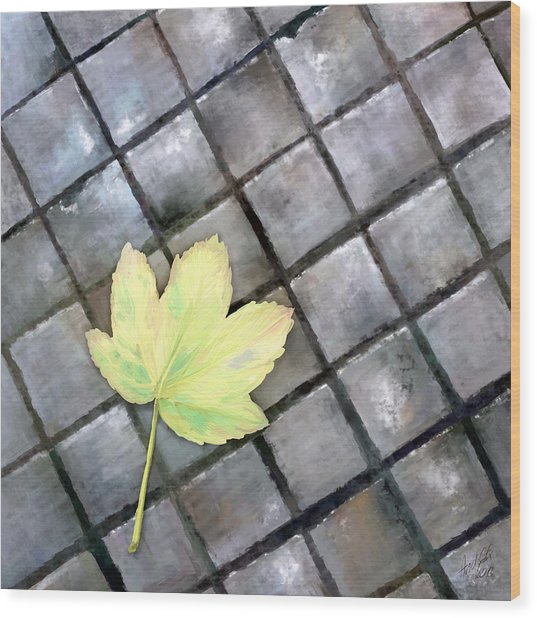 Leaf On Ground Wood Print by Ondrej Kollar