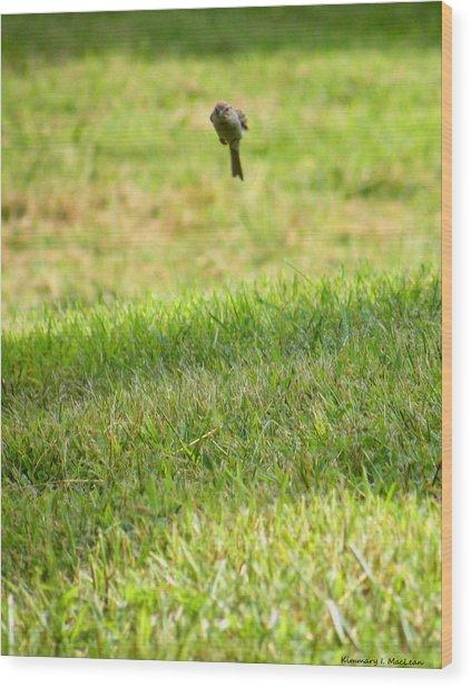 Leaping Bird Wood Print