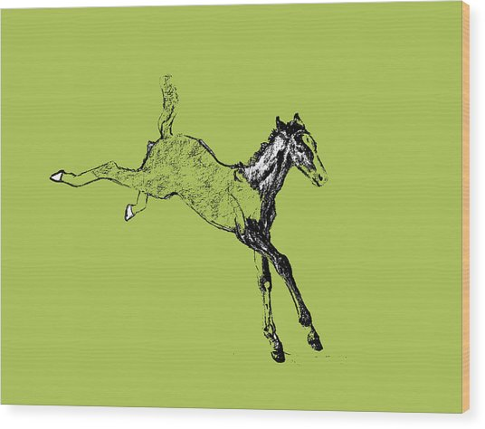 Leaping Foal Greens Wood Print