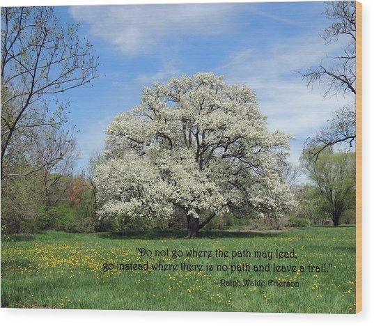 Leave A Trail Wood Print