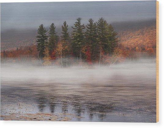 Lefferts Pond Wood Print