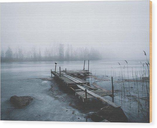 Left For Winter Wood Print