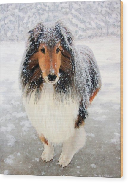Leo In The Snow Wood Print