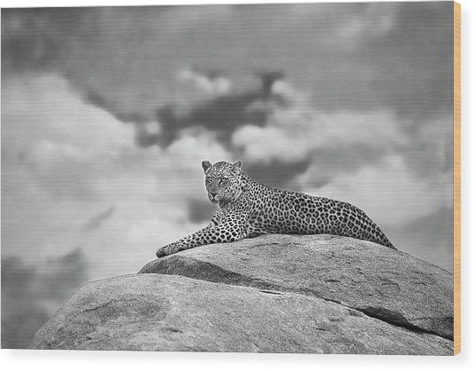 Leopard On A Kopje Wood Print