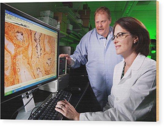 Leptospira Bacteria Research Wood Print