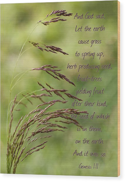 Let The Earth Bring Forth Grass Genesis Wood Print