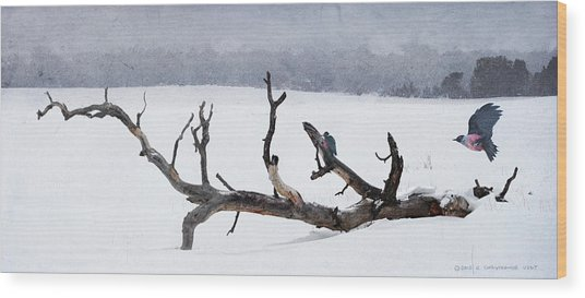 Letting Go  -  Lewis Woodpeckers Wood Print by R christopher Vest
