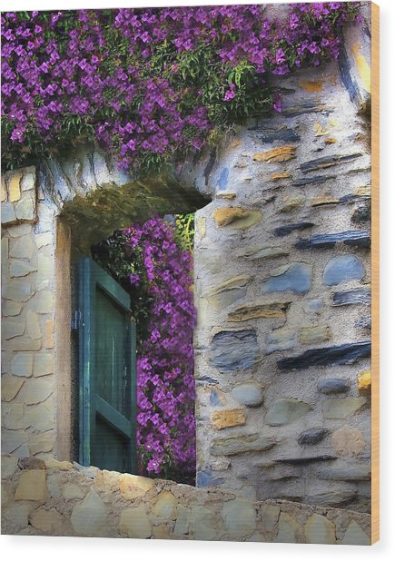 Levanto Bougainvilla Wood Print