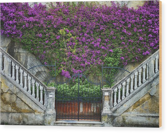 Levanto Facade Wood Print