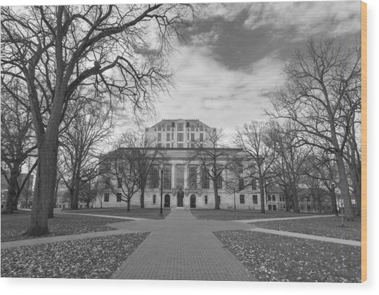 Library Ohio State University Black And White  Wood Print