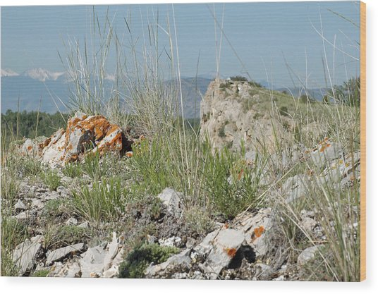 Lichen Covered Rocks At Missouri Headwaters State Park Montana Wood Print