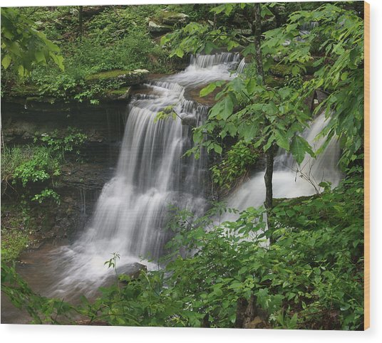 Lichen Falls Ozark National Forest Wood Print