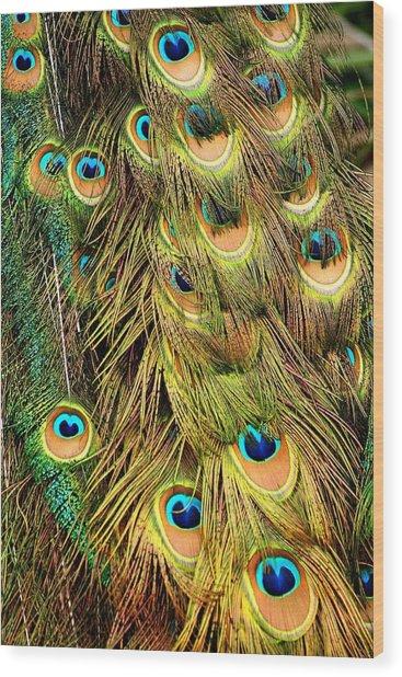 Life Gleam Wood Print by Juozas Mazonas