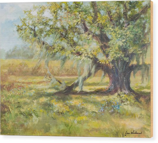 Life In The Low Country Wood Print by Jane Woodward