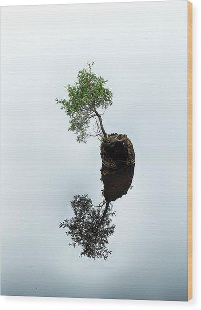 Life On The Batsto Wood Print