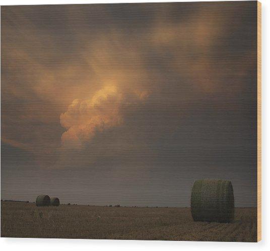 Life On The Plains Wood Print