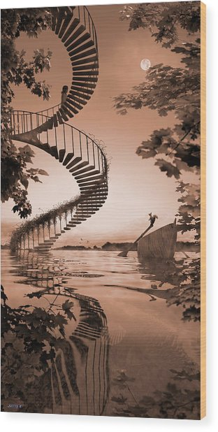 Life Without Stairs Wood Print