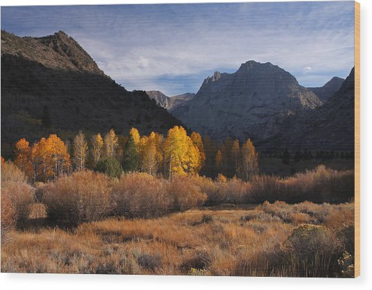 Light And Dark In An Autumnal Sierra Landscape Wood Print