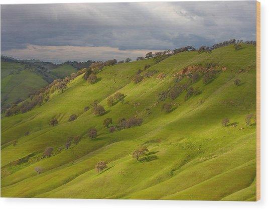 Light And Shadows On A Green Hillside Wood Print