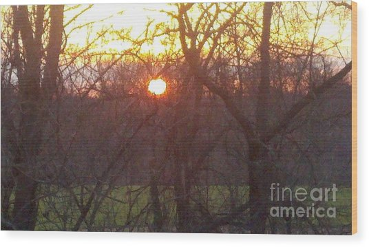 Light At Sunrise Wood Print