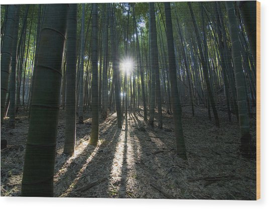 Light At The End Wood Print by Aaron Bedell