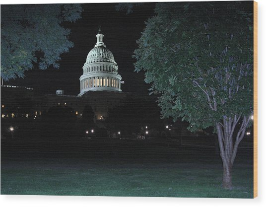Light In The Capitol Wood Print by Frank Savarese
